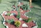 hortikultura60 / klinki pored slike za povratak nazad